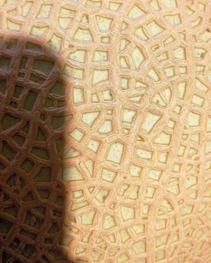 melon pattern japan elena brunello